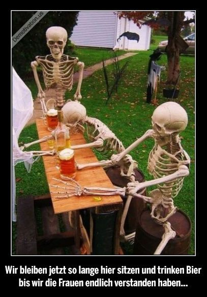 """We sit here so long now, and drink beer until we finally have understood woman"""