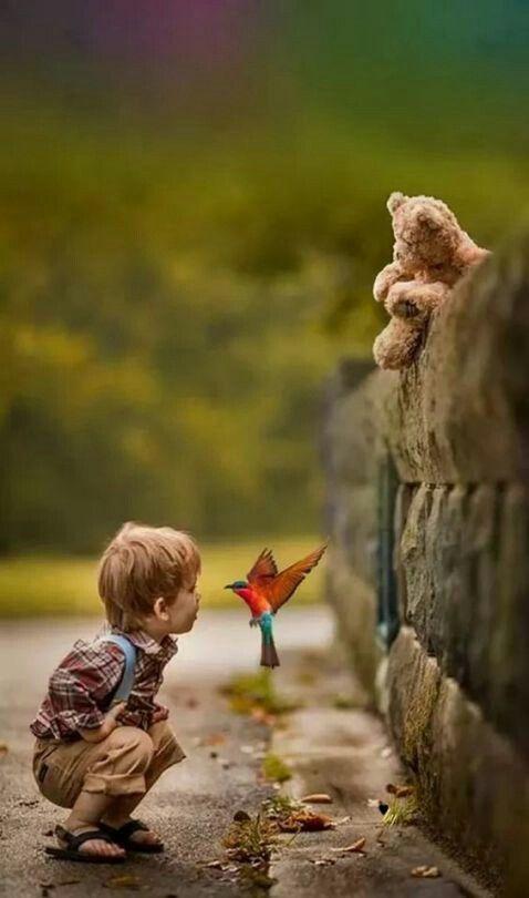 Willkommen im Märchenland, kleiner Freund.