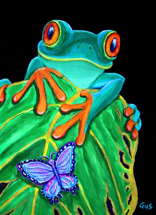 Red eyed tree frog and butterfly.