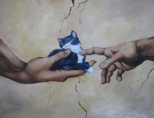 Et Dieu créa... LE CHAT !                                                                                                                                                                                 Plus