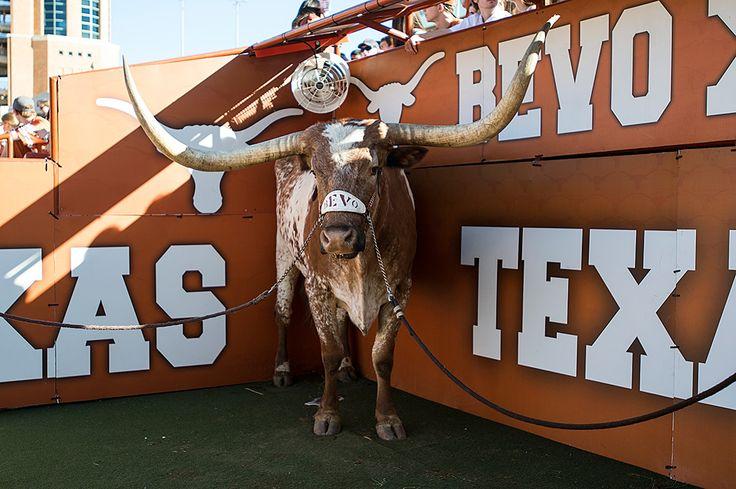 Hookup in austin texas