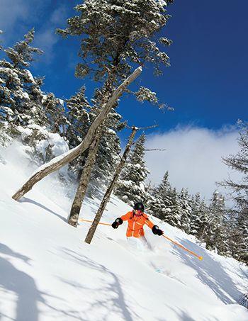 Nees more balsams wilderness ski area dick