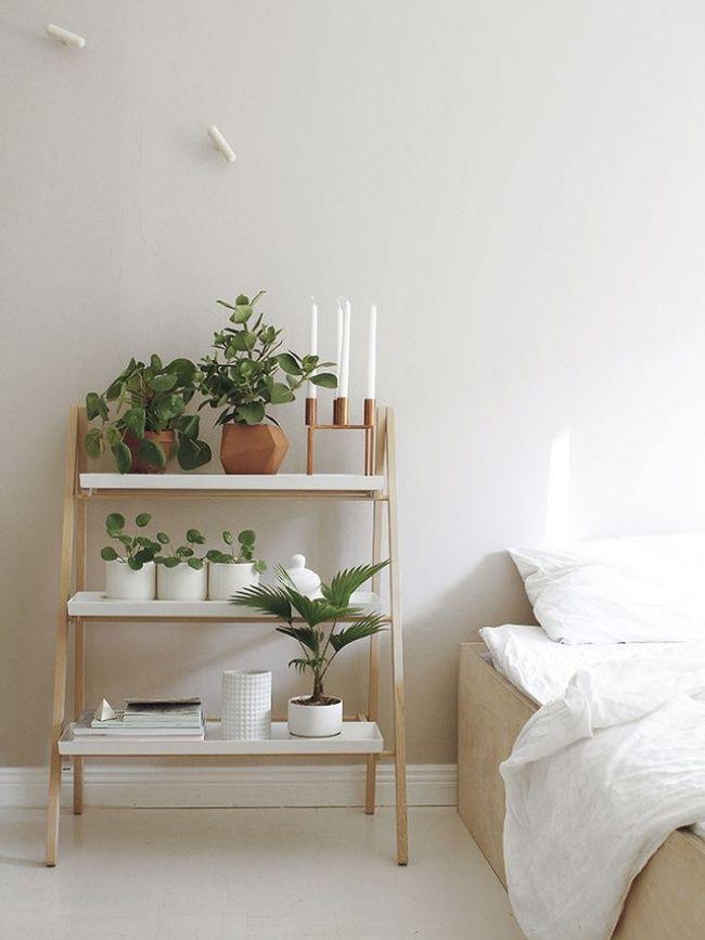 Mon lit ma plante