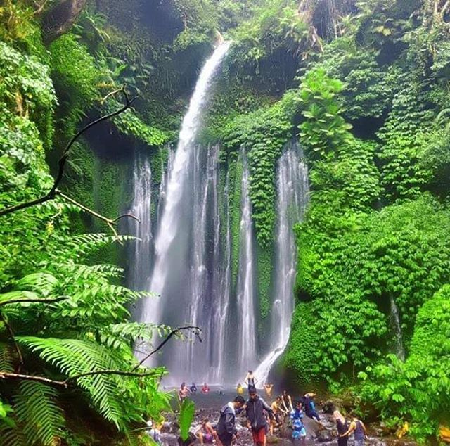 Have you been here..? Sindang Gila Waterfall - One of the best waterfall in Lombok island.  Tag your friend you want to go with  Join #mujitrekkertrip  #mujitrekker #sindanggilawaterfall #tiukelepwaterfall #lombokisland #explorelombok #backpacking #traveling #mountaineering #hiking #tourlombok #tour_through_desolation #bestvacations #adventure #amazing #waterfall