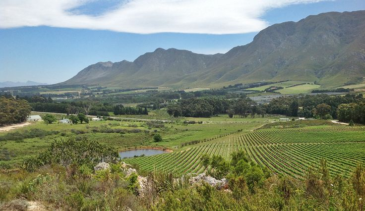 10 wine routes near Cape Town you don't already know about