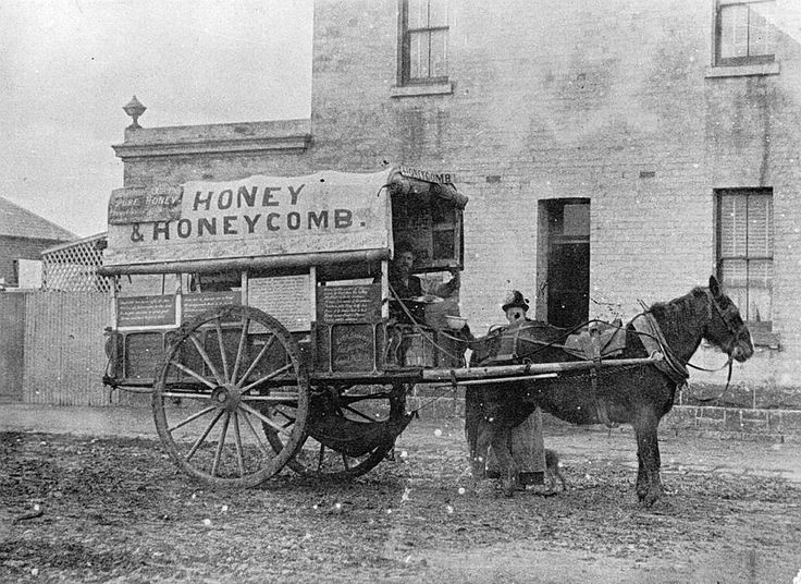 Honey Seller With his Horse & Cart, Stawell, Victoria, circa 1890