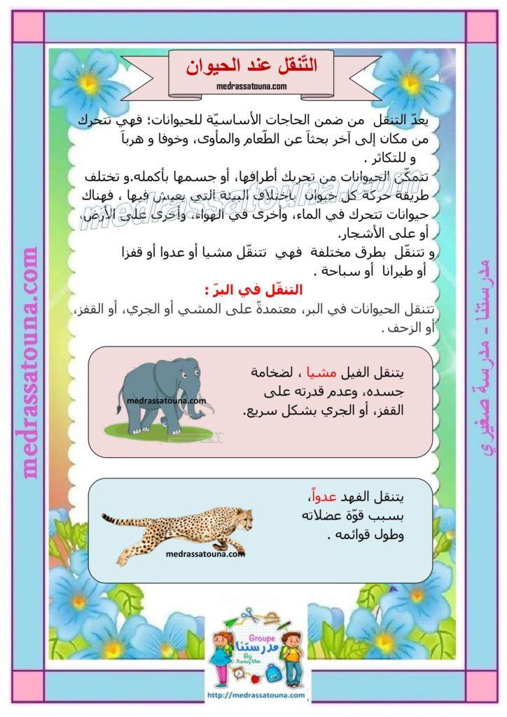 بحث حول التنقل عند الحيوان مدرستنا Deco Frame