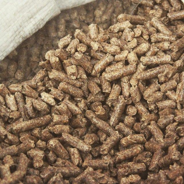 Biomasa procede de olivar pellets madera olivo