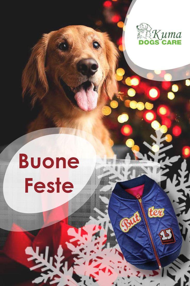 Buone feste da Kumadogscare!  http://kumadogscare.com/impermeabili-e-giacche/334-kumadogscare-bomber.html  Seguici sul nostro shop online www.kumadogscare.com  Copyright 2016 - Kumadogscare  Graphics and movie edited by:Pigikappa.com  #cani #toilettatura #kuma #dogs #shop #kumadogscare #gatti #cats #pets #natale #christmas #regalo #present #box #puppies