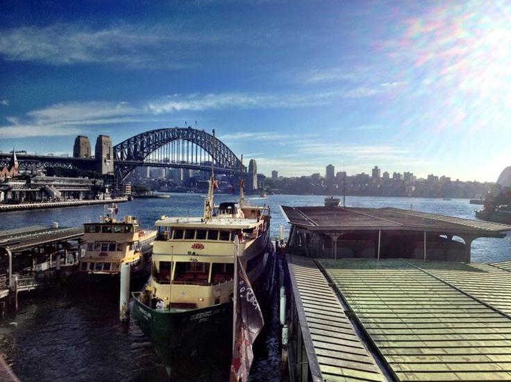 airhead at Circular Quay, Sydney  'Gorgeous day'  (Circular Quay, Sydney, Australia)
