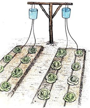 DIY?  Bucket drip kits, a one time cost of $12, allow growing vegetables during the dry season using drip irrigation. Drip irrigation, originally developed in Israel, targets precious water to where it needs to go, the roots of the plants. Much less labor - it uses water efficiently. Less to lug, less time spent fetching it, more time gardening.