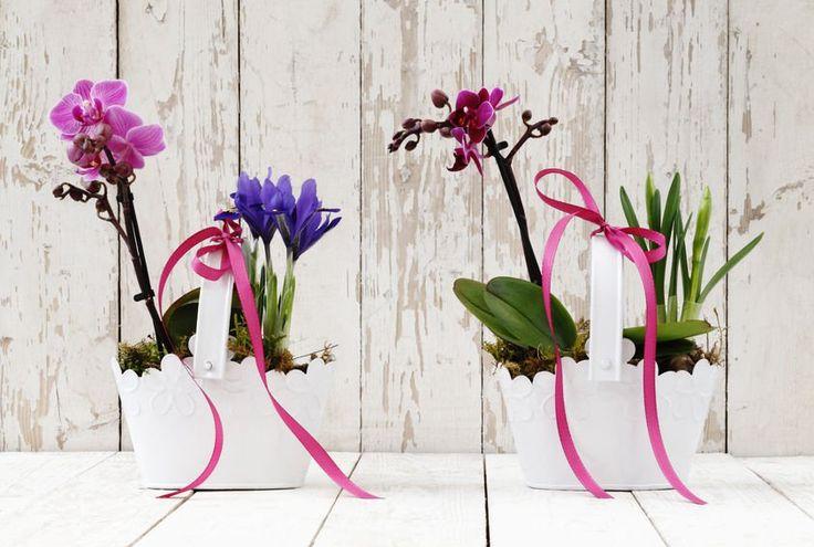 Dekoracja dla miłośników kwiatów i delikatności.  Postaw koszyczki na oknie i daj je podziwiać jednocześnie ludziom z zewnątrz i gościom. #design #urządzanie #urząrzaniewnętrz #urządzaniewnętrza #inspiracja #inspiracje #dekoracja #dekoracje #dom #mieszkanie #pokój #aranżacje #aranżacja #aranżacjewnętrz #aranżacjawnętrz #aranżowanie #aranżowaniewnętrz #ozdoby #kwiat #kwiaty #roślina #rośliny #roślinność