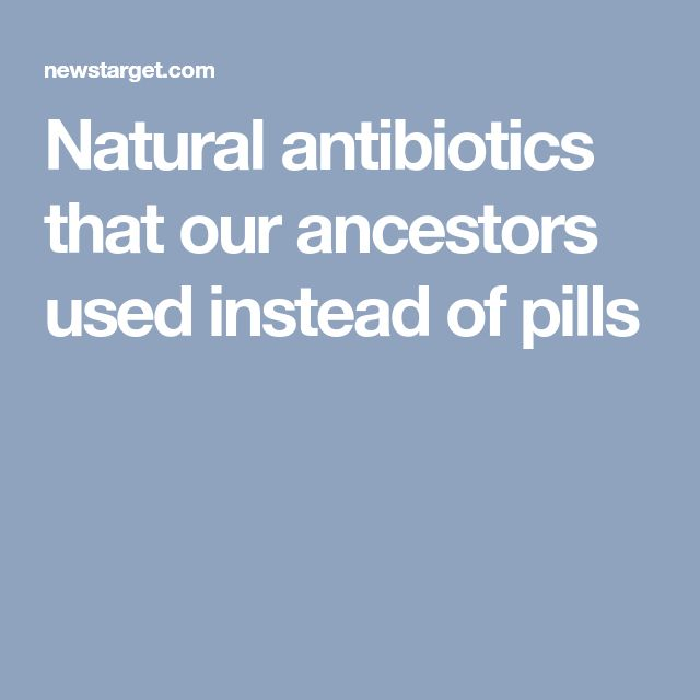 Natural antibiotics that our ancestors used instead of pills