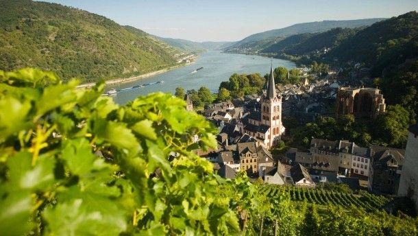Zu Bacharach am Rheine: Da wohnt, glaubt man Clemens Brentano, eine Zauberin namens Loreley. Der Zaubertrunk aber wird, glaubt man unserem Autor, an den Hängen über der Stadt angebaut
