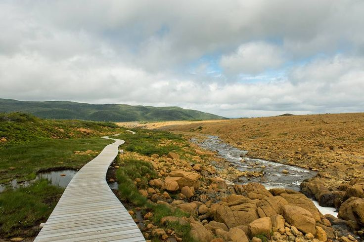 A boardwalk runs along the trail at the Tablelands in Gros Morne National Park…