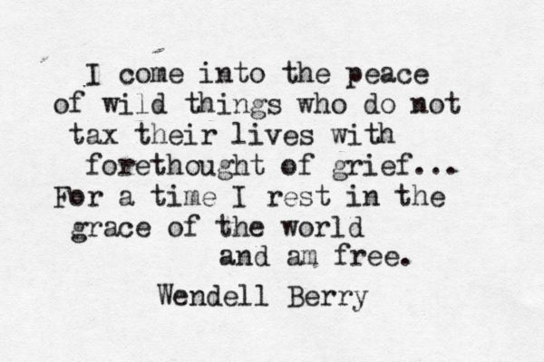 """I come into the peace of wild things who do not tax their lives with forethought of grief...For a time I rest in the grace of the world and am free"" ~ Wendell Berry"