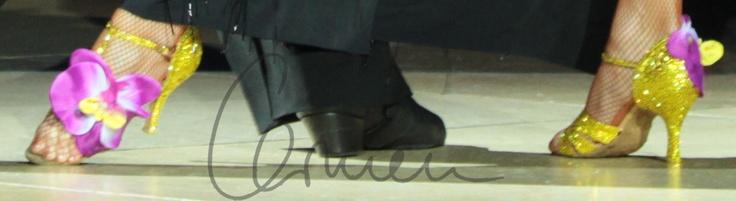 Custom Shoes for Dance Legend - Carmen