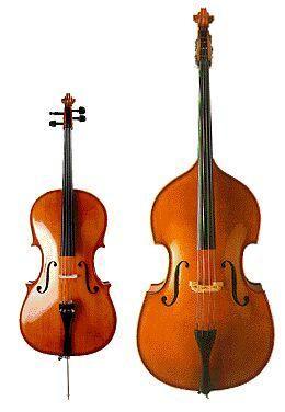 Différence : Violoncelle / Contrebasse (photo) - La Contrebasse