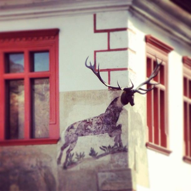 A deer gettin' out of the wall, Sighișoara | Flickr – Condivisione di foto!