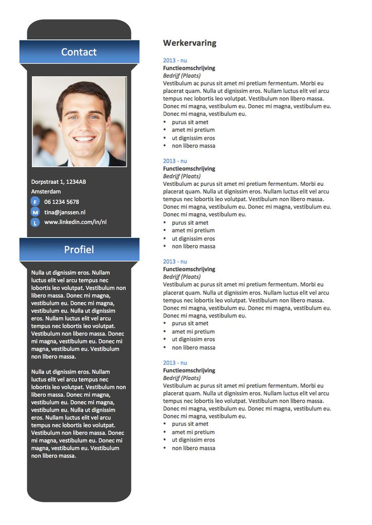 103 best cv sjablonen van lifebrander images on pinterest