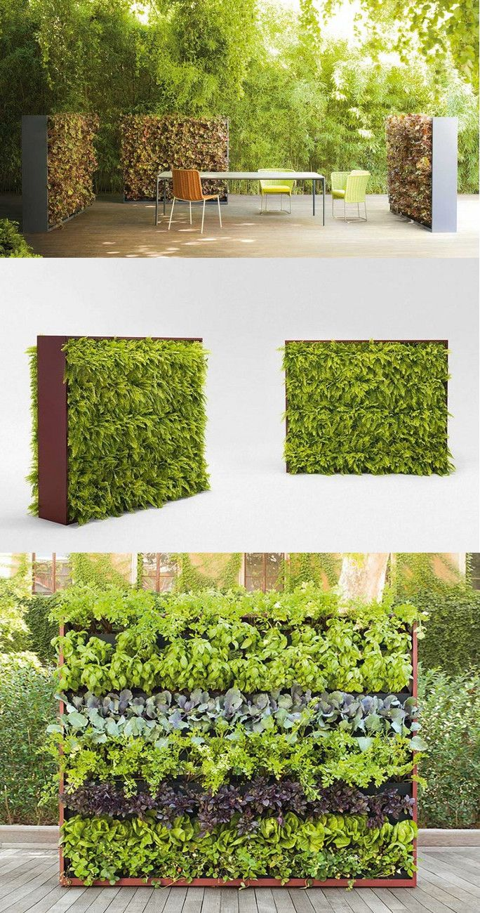 1000 Images About Vertical Gardens On Pinterest Green Walls