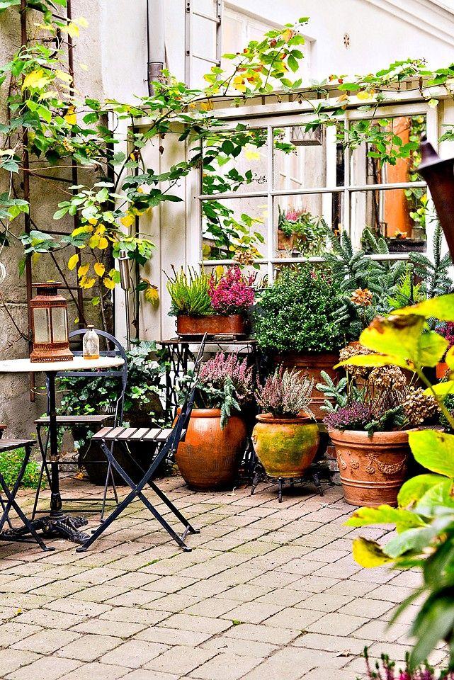 Petite cour pavée foisonnante de plantes en pots. (Bjurfors)