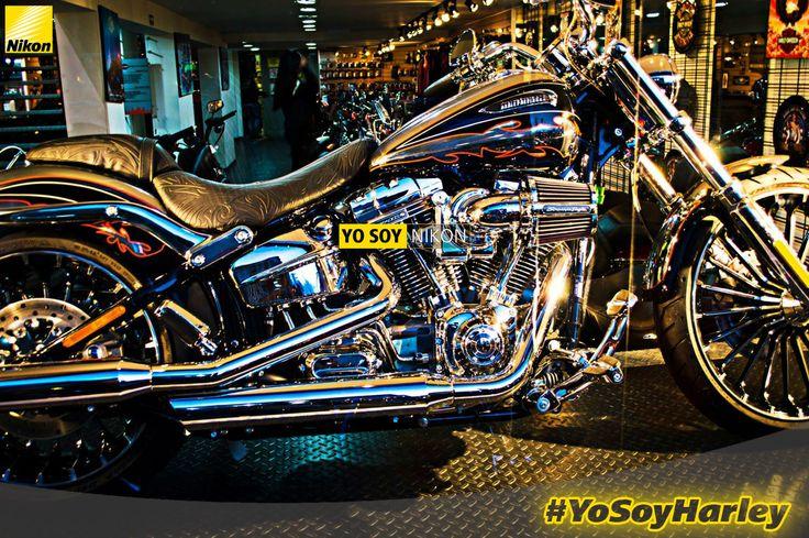 Juan Francisco Marulanda Alvarez #YoSoyHarley, #YoSoyNikon #Nikon D3200