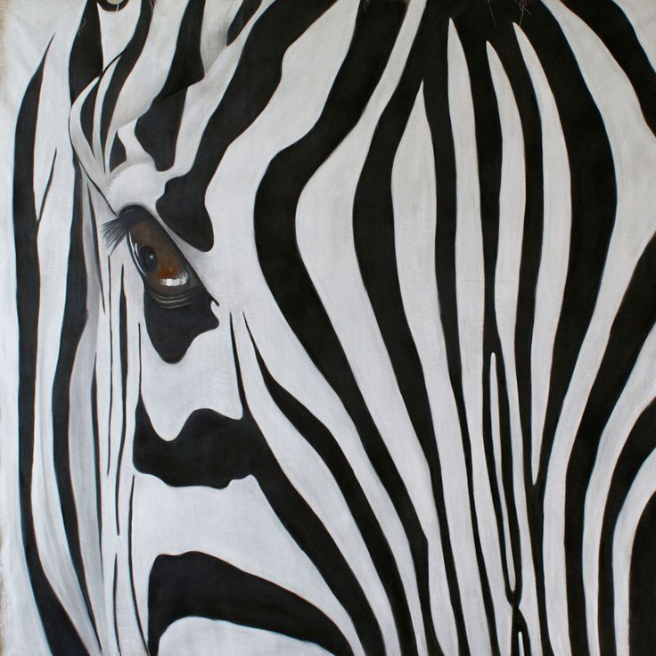 Zebre zebra-Thierry Bisch Animal painter