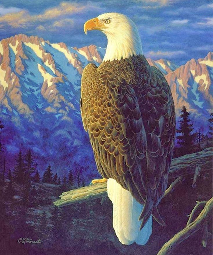 pinturas-paisajes-con-aves-y-animales