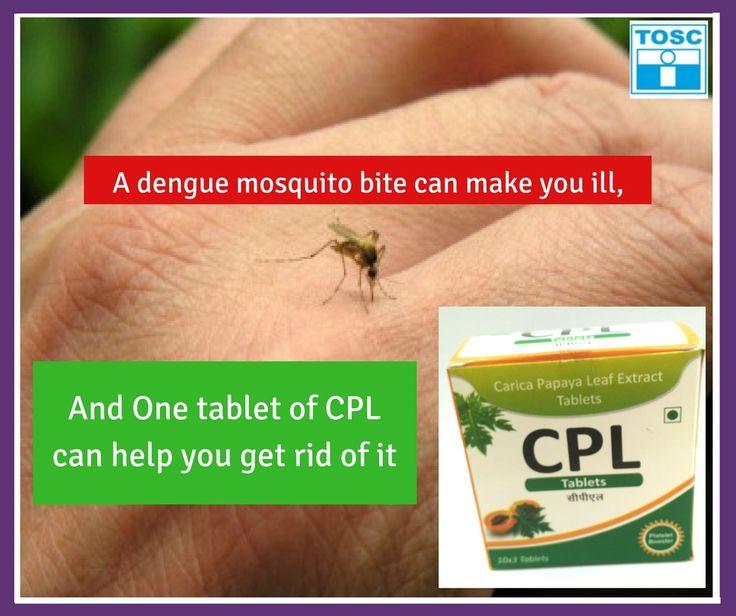 Leading manufacturer of Carica Papaya Leaf (CPL) tablets
