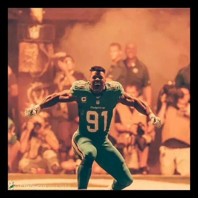 best loved 8ad5e 380bb 91 cameron wake jersey mikes