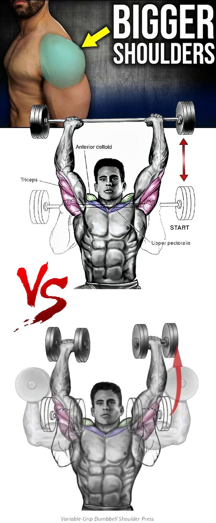 💪How to Variable-Grip Dumbbell Shoulder Press – weighteasyloss