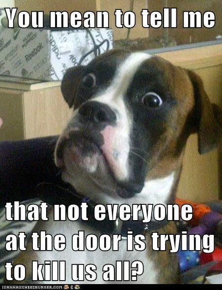 You mean to tell me  that not everyone at the door is trying to kill us all?