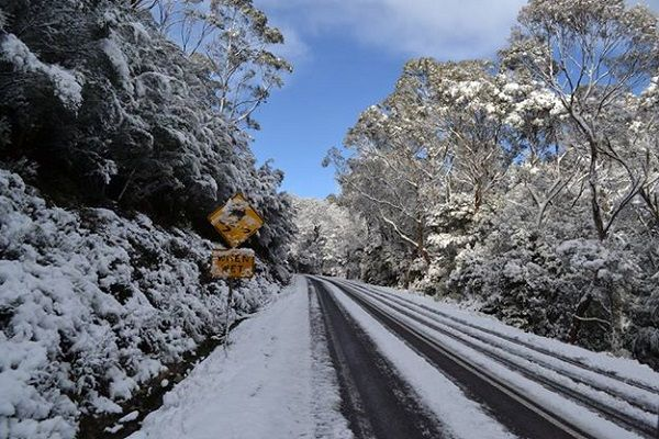 Snow in Tasmania… Oh, The Pictures!