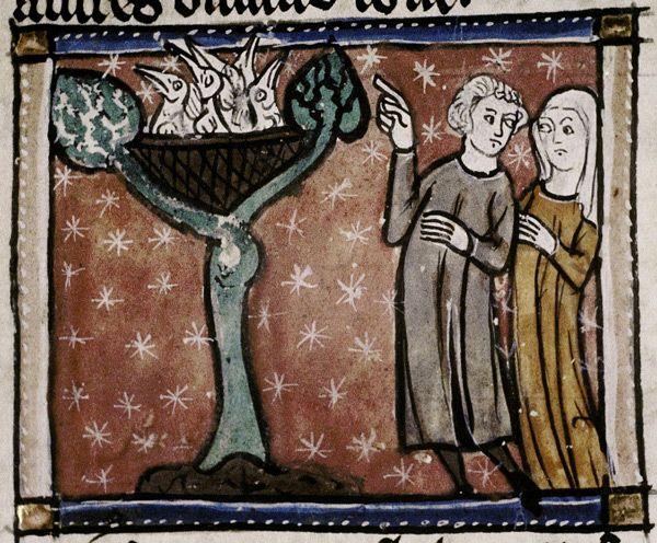 Medieval Bestiary : Hoopoe Gallery