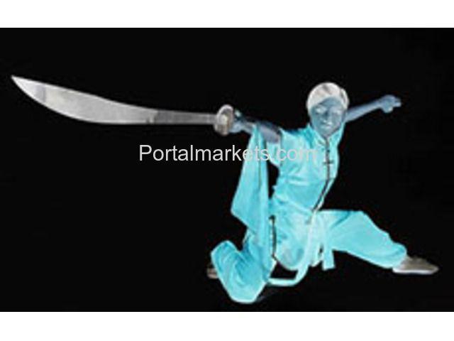 Portal Markets.com | kungfu, Martial Arts, Self Defense Classes in Kung Fu Academy Lucknow | Uttar Pradesh | Other Classes