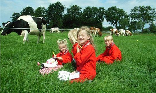 Op het weiland een aantal opdrachten uit je boerenpaspoort uitvoeren voor het fel begeerde Boerenknechtdiploma op FarmCamps 't Oortjeshek