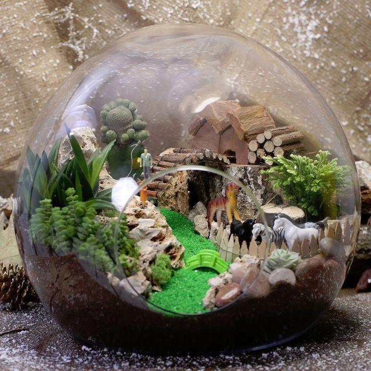 Küre cam içerisinde teraryum tasarım