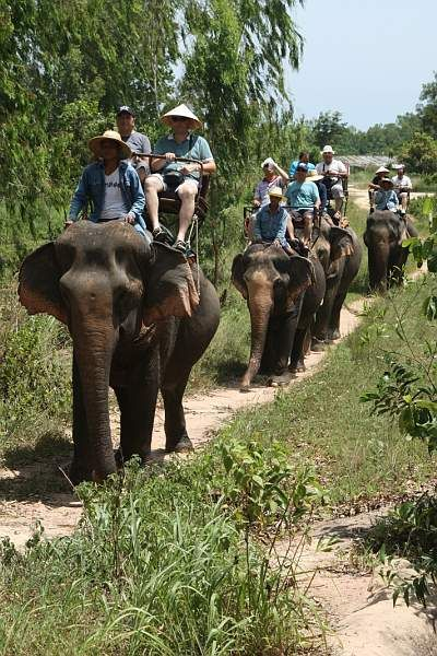 Pattaya Elephant Village in #Pattaya Thailand is an interesting place to visit for the tourists as the entire area houses several elephants and showcases their lifestyles. Book Now