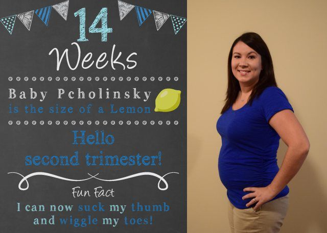 Bumpdate: 14 weeks pregnant, weekly chalkboard pregnancy countdown, pregnancy chalkboard sign, baby countdown, second trimester, baby bump, bump, chalkboard pregnancy tracker, first time mom, mom to be, pregnancy, weekly bump, weekly picture