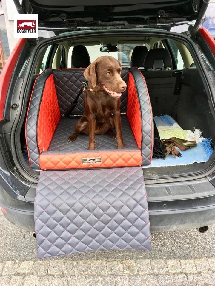 hundeboxen fürs auto