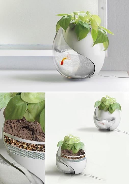 pet & plant ecosystem for small space interiors. #en