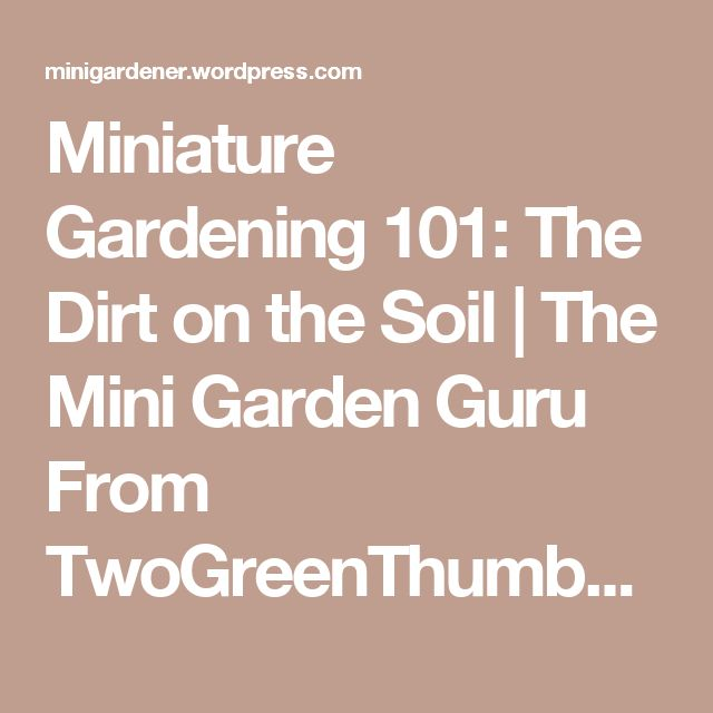 Miniature Gardening 101: The Dirt on the Soil | The Mini Garden Guru From TwoGreenThumbs.com