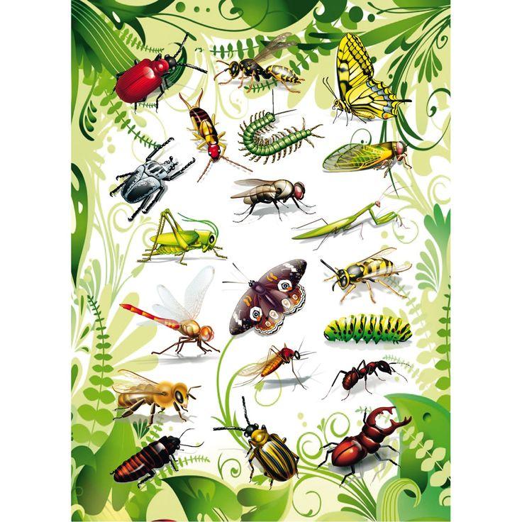 Kriebelbeestjes praatplaat