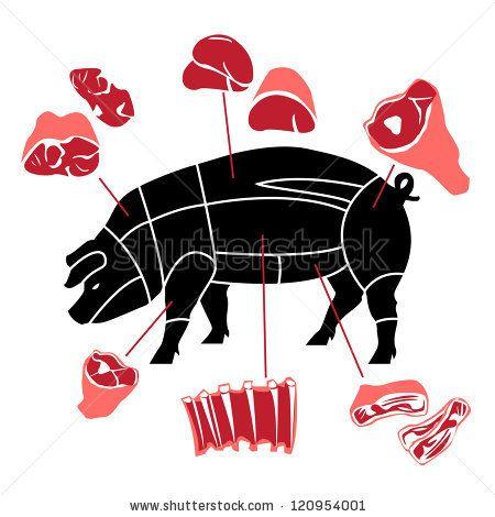 Pork Or Pig Meat Cuts Ilustração Vetor Stock 120954001 : Shutterstock