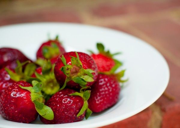strawberry picking fort mill, SC festival carissa rogers photography So Red they're Naughty!