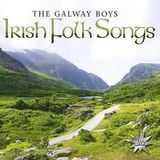 Irish Folk Songs [CD], 25617917