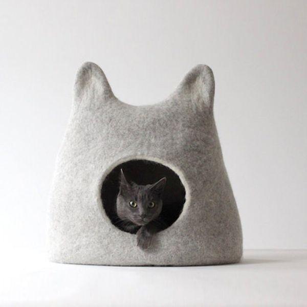 die besten 17 ideen zu lustige tiergesichter auf pinterest. Black Bedroom Furniture Sets. Home Design Ideas