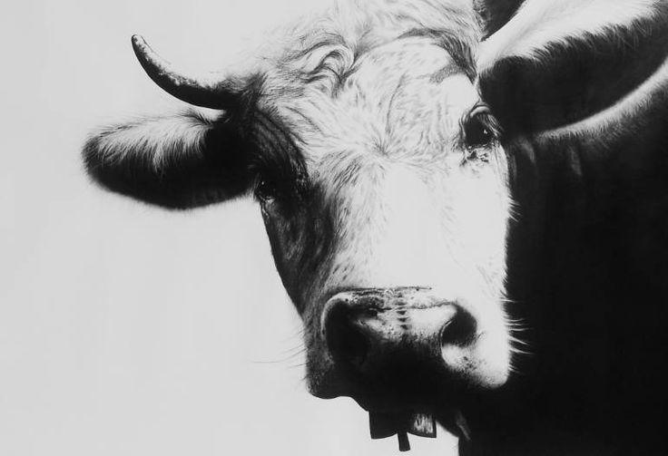 Schweize Kuh I, Ira van der Merwe