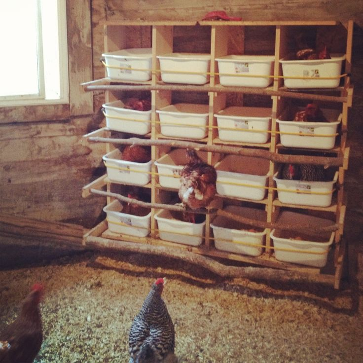 Chicken nesting boxes made from dollar store bins